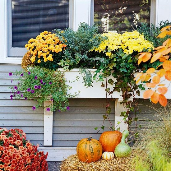 Fall window decorations are a great way to boost curb appeal.
