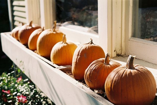 Add pumpkins to your window box for more fall flair.