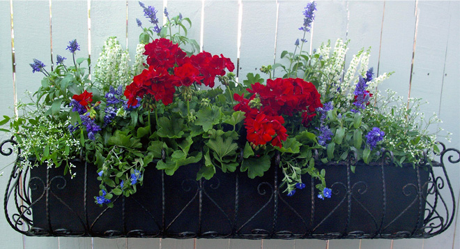 Patriotic window boxes add style and curb appeal