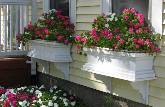 Window boxes are great way to add color to your home.