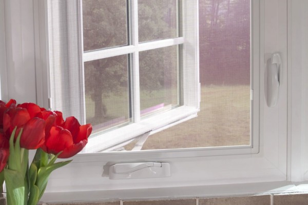 Contemporary casement window near red tulips