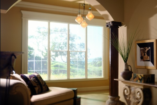 Single hung window provides lots of natural light in living room